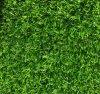 渭南哪里有卖人造草坪围墙草坪137,72120237