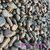 鹅卵石 鹅卵石滤料 变压器滤油池鹅卵石5-8厘米