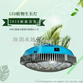承越品牌直销植物灯工厂led植物生长灯