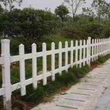 草坪绿化围栏 塑料pvc围栏
