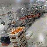 小酥肉油炸機專業生產廠家 全自動油炸加工設備