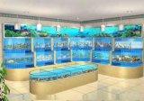 深圳海鲜池安装、海鲜鱼池图片设计