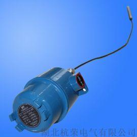 缆式雷达物位计BTRD41混凝土搅拌