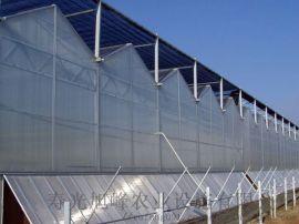 阳光板温室,PC阳光板温室造价