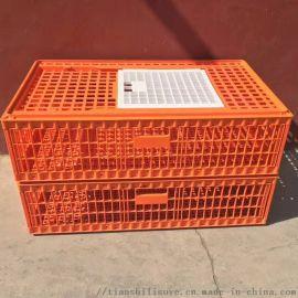 方形淘汰塑料大鸡笼 家禽塑料周转箱 成鸡周转箱