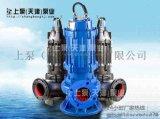 广东佛山泵站QW铸铁污水泵