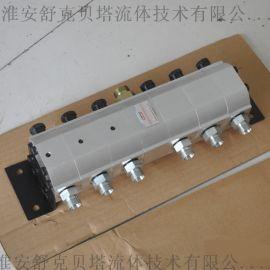 FMA-6-2.1齿轮分流马达