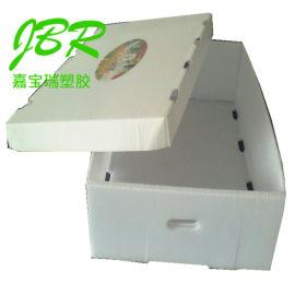 厂家供应PP中空板包装盒