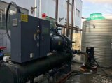 单螺杆压缩机冷水机组 螺杆式冷冻机组