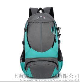 厂家直销定制休闲双肩包旅游登山包大容量户外背包新款