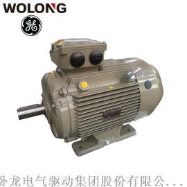 卧龙GE WE3系列  效率三相异步电动机