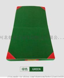 厂家专业生产 体操垫 学校空翻垫 帆布折叠体操垫