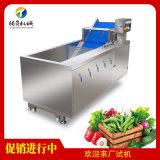 騰昇自產蔬菜洗菜機 氣泡噴淋葉菜清洗機