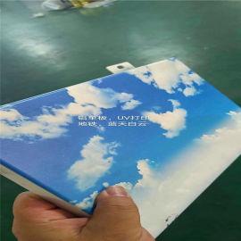 3d陶瓷花打印铝单板   白色冲孔3d打印铝单板