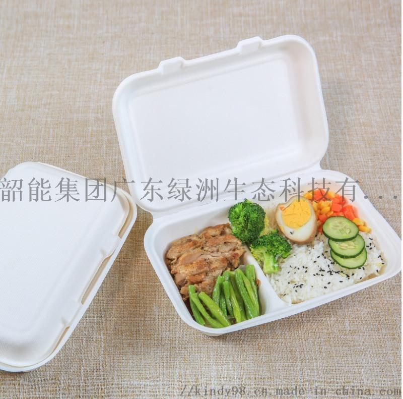 9*6*3锁盒长方形两格饭盒外卖打包可降解