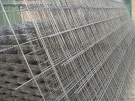 电焊网荷兰网护栏网片养殖抹墙喷浆围栏网