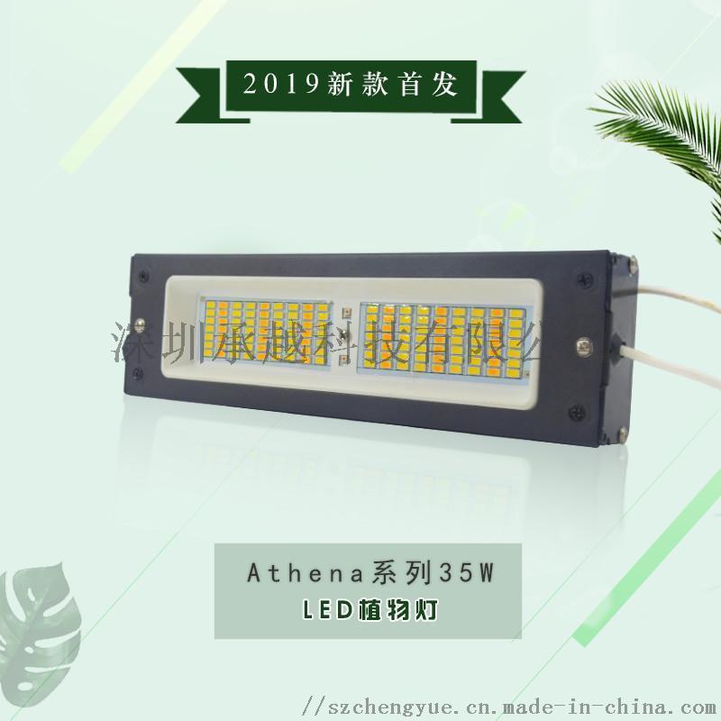 承越花卉瓜果种植日照灯led植物生长补光灯