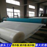 重慶20耐根穿刺排水板隧道工程材料
