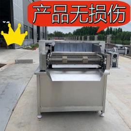 芥菜丝低温漂烫机 成套酱菜加工流水线设备