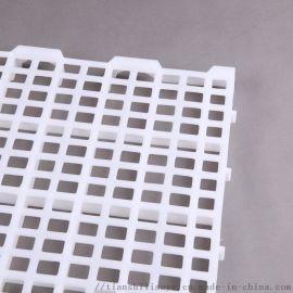 铺建大型养鸡场漏粪板 鸡舍塑料漏粪板 鸡用漏粪板