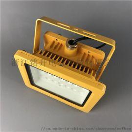 气体车间装防爆灯 60w防爆灯 LED节能灯
