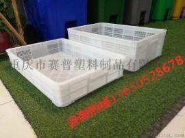 凉州彝族州  龙虾高存活运输塑料筐