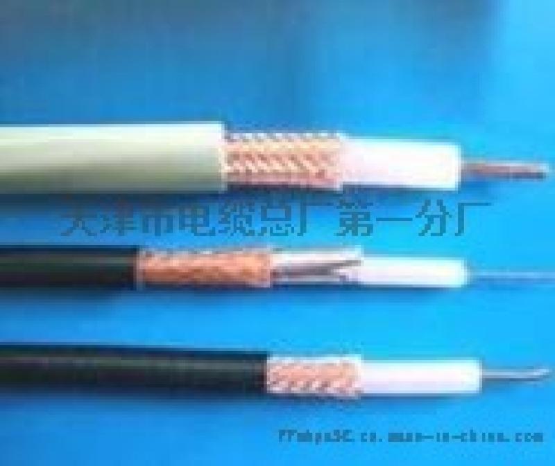 电视电缆SYV、SYV53铠装通信电缆