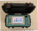 智能烟尘烟气测试仪DL-6300彩屏款