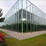 玻璃幕墙工程-幕墙玻璃更换-玻璃幕墙维修报价
