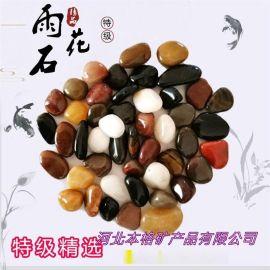 雨花石 2-3cm精品高抛光雨花石 鱼缸装饰雨花石