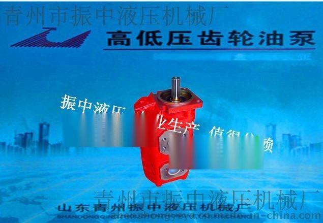 山东济南CBGJ2063/2063高压双联泵