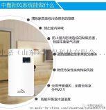 中嘉PM2.5過濾99.9%壁掛式新風系統100A