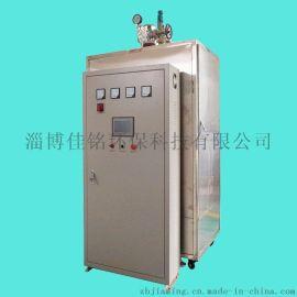 高温蒸汽发生器 佳铭LDR电加热蒸汽发生器