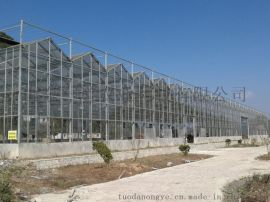钢结构温室大棚轻钢结构温室大棚