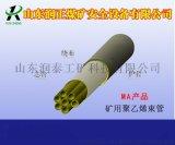 单芯、多芯束管矿用塑料束管山东润泰质量保证