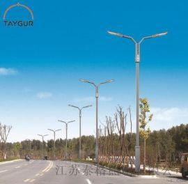 7米LED照明 路灯杆 热镀锌 道路照明 农村路灯