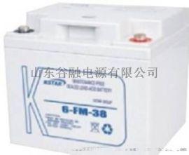 原装科士达12V38AH 科士达6-FM-38铅酸蓄电池 UPS不间断电源电瓶特价包邮