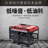 大泽动力12kw小型汽油发电机TO13000ET
