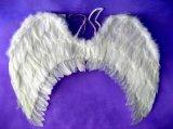 羽毛翅膀(HTAW-12007)