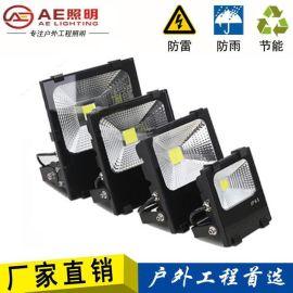 AE照明LED投光灯10w20w30W50W100W瓦P65户外防水