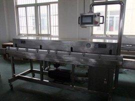 苏州厂家直供大型真空包装机VS-2500L外抽式真空包装机