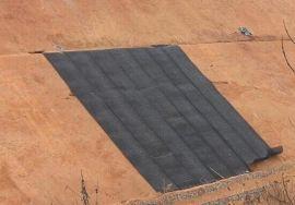 厂家直销护坡铁丝网,护坡石笼网,护坡加筋麦克垫护坡雷诺护垫价格
