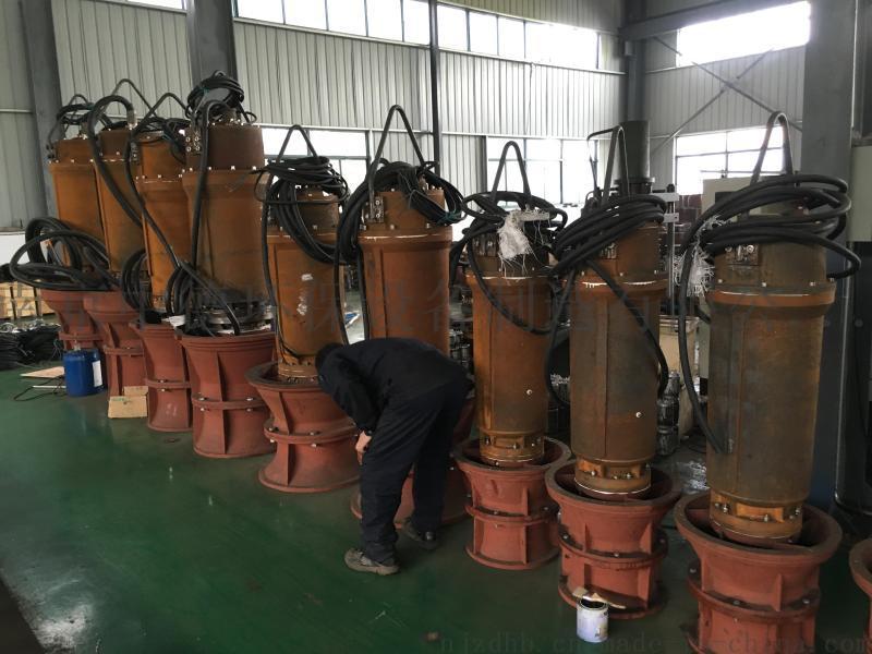 中德潜水轴流泵,厂家直销