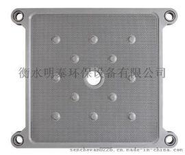 宁夏隔膜滤板厂家/新疆滤榨机/衡水明泰环保设备有限