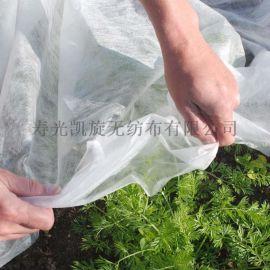 抗老化 亲水胡萝卜育苗用PP无纺布覆盖膜  防霜冻