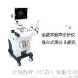 超声诊断仪黑白B超机 大为医疗DW-370技术版