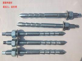 深圳定型化学锚栓 倒锥形化学螺栓M12M16现货供