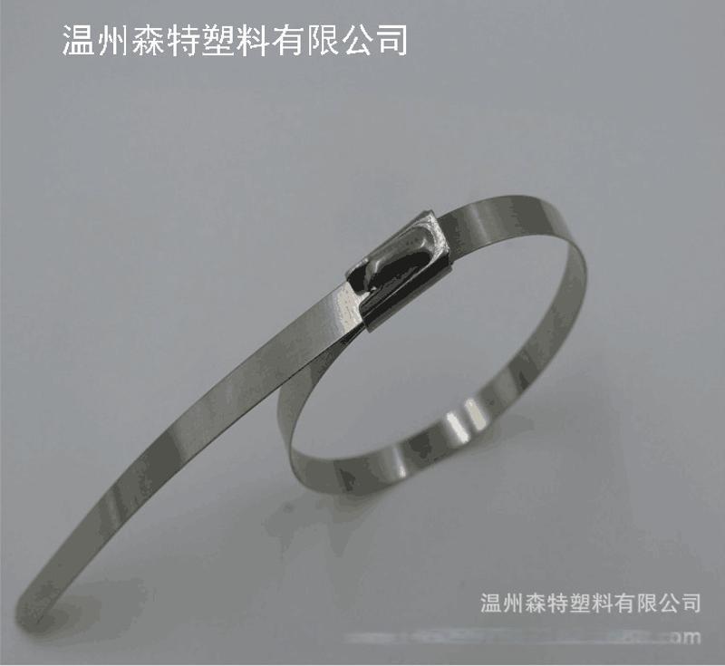 广东精密不锈钢扎带厂家直销304电缆标牌不锈钢扎带12*1250热卖中