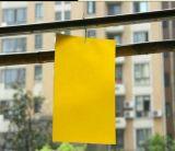 诱虫板/诱虫板的作用/人元牌诱虫板