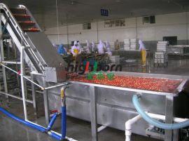 草莓清洗机  草莓加工罐头加工设备 山东汇尔宝